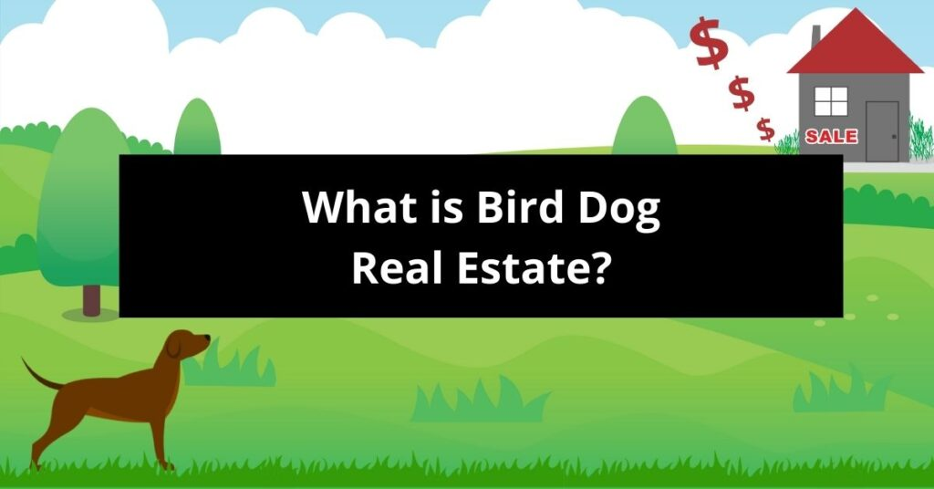 What is Bird Dog Real Estate